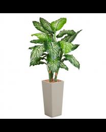 Kunstplant Dieffenbachia in sierpot Clou vierkant - H175