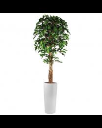 Kunstplant Ficus in sierpot Clou rond - H250