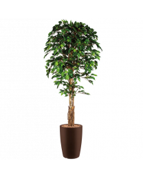 Kunstplant Ficus in sierpot Genesis rond - H210