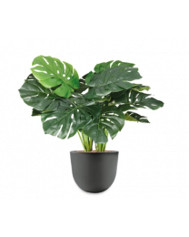 Kunstplant Monstera in sierpot Eggy - H70