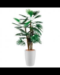 Kunstplant Rhapis Palm in sierpot Genesis rond - H150