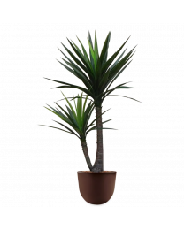 Kunstplant Yucca in sierpot Eggy - H130